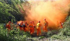 《全国森林防火规划(2016-2025年)》中期评估启动
