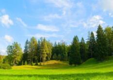 李克强对森林草原防灭火工作作出重要批示